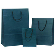 Beautiful Coloured Paper Bags