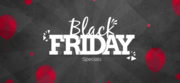 Black Friday Deals and Discount Code
