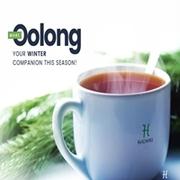 Oolong Tea Bags UK- The Best Chinese Tea Blend.